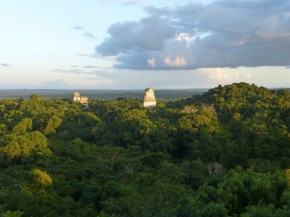 Hidden in the jungle the lost city of Tikal