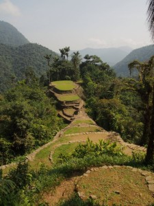 At the summit of La Ciudad Perdida, the Lost City, Colombia
