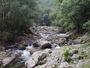 Buritaca River near the Lost City, Colombia