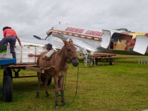 Horse and cart unload luggage from the plane at La Macarena Airport, Colombia
