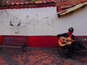 A musician in la Candeleria, Bogotoa