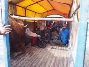 Local transport from Yanama